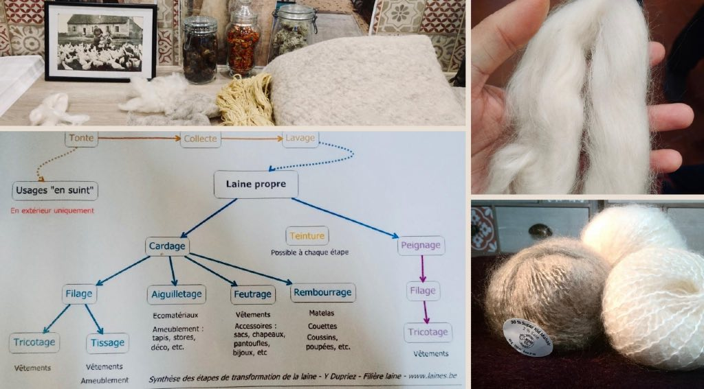 Etapes de production de la laine mohair